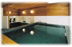 Photo thanks to www.japanesebathhouse.com