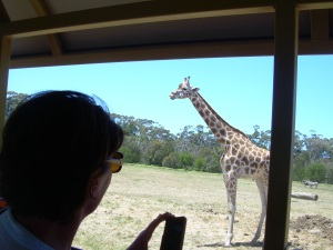 Werribee Zoo 003